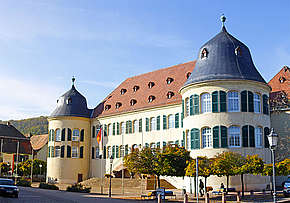 Bild Schloss - Bad Bergzabern